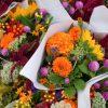 Standardele din domeniul plantelor floricole